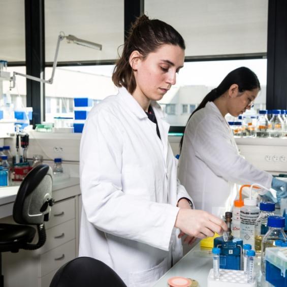 Key research partnerships